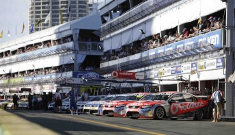 The cars line up in pit lane at last year's V8 Supercars race at Surfers Paradise