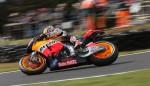 speedcafe motogp sun 4724 150x86 GALLERY: AirAsia Australian MotoGP at Phillip Island