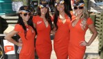 speedcafe gridgirls 21 150x86 GALLERY: Grid Girls at the Armor All Gold Coast 600