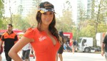 speedcafe gridgirls 25 150x86 GALLERY: Grid Girls at the Armor All Gold Coast 600