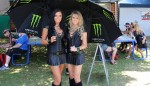 speedcafe gridgirls 9 150x86 GALLERY: Grid Girls at the Armor All Gold Coast 600