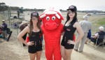 speedcafe winton gridgirls 0013 150x86 GALLERY: Grid Girls at Winton Motor Raceway