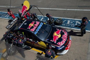 Jamie Whincup competing with Red Bull Racing Australia at the Clipsal 500