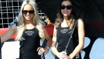 GALLERY: Grid Girls from the Bathurst 1000 Image 40