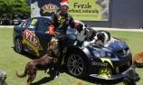 FIRST PICS: Owen's VIP Petfoods Commodore
