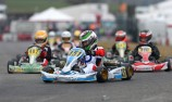 Aussie eighth in Karting Winter Cup