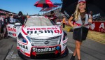GALLERY: Grid Girls from the Clipsal 500 Image 6