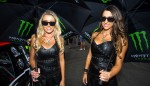 GALLERY: Grid Girls from the Clipsal 500 Image 5