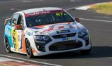 Miedecke returns to production cars in GT Falcon