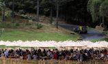 GALLERY: Leadfoot Festival