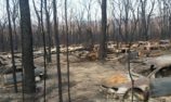 Fundraiser for bushfire destroyed off road racing facility