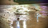 Rain forces Australian Open cancellation