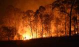 Isuzu Ute drives support for bushfire aid